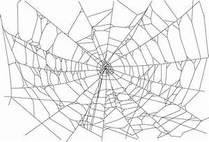 Halloween Spider Web Png – Festival Collections