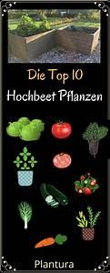 Welche Töpfe Sind Die Besten : die top 10 der besten hochbeet pflanzen garten ~ Watch28wear.com Haus und Dekorationen