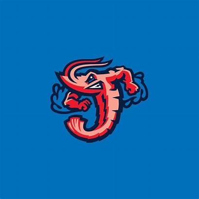 Jacksonville Iphone Shrimp Jumbo Cavaliers Suns Baseball