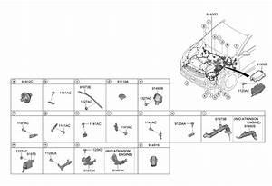 2019 Kia Forte Control Wiring