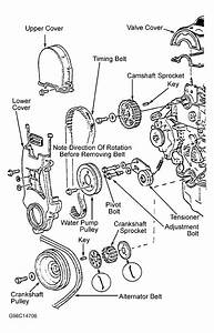 1984 Honda Accord Serpentine Belt Routing And Timing Belt
