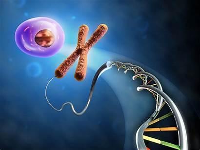 Biology Cell Dna Wallpapersafari