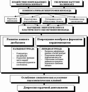 Современные методы лечения гипертонической болезни