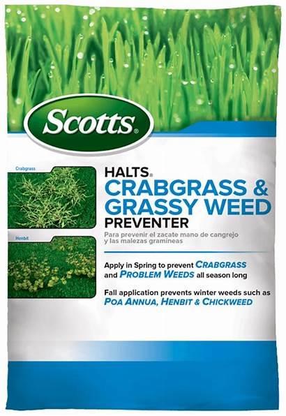 Crabgrass Scotts Weed Preventer Halts Grassy Kill