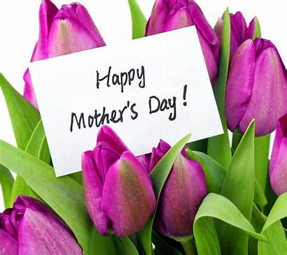 Mothers Mother Wallpapers Happy Wallpapercave Tulips Flowers