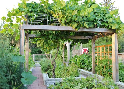 Inexpensive Kitchen Backsplash Ideas Pictures - chic grape arbor method seattle farmhouse landscape decorating ideas with farm farmhouse garden