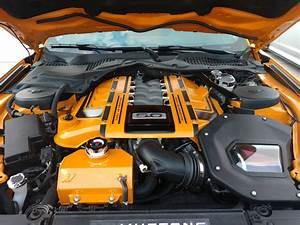 3rd gen coyote engine cover | 2015+ S550 Mustang Forum (GT, EcoBoost, GT350, GT500, Bullitt ...