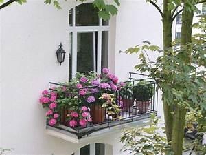 Blumen Für Schatten : die besten 17 ideen zu terrassen schatten auf pinterest ~ Lizthompson.info Haus und Dekorationen