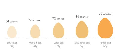 how many medium eggs equal 2 large eggs how many calories are in an egg