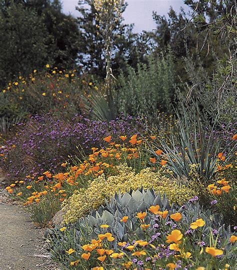 native plants  landscape management heaviland