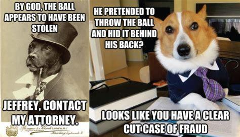 dog fraud