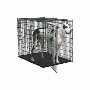 plastic dog crates