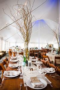 Tall, Curly, Willow, Branch, Centerpieces