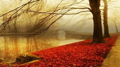 Fall Autumn Nature Wallpapers Background Backgrounds Mist