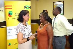 Spanish Jamaican-Foundation Donates to Children's Homes   CDA