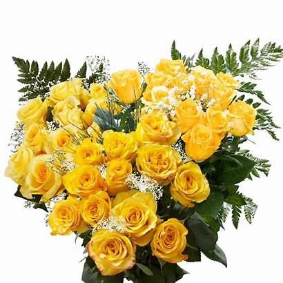 Roses Dozen Yellow Globalrose Rose Fillers
