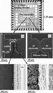 Images Of Electrodes At Different Stages   A  Optical