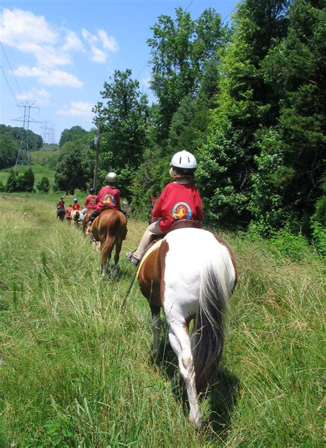 summer riding registration camps leg mail lessons