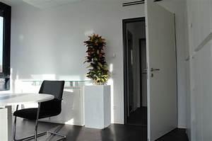 Von Grün Karlsruhe : b robegr nung mit hydrokulturpflanzen in einem b ro in karlsruhe ~ Orissabook.com Haus und Dekorationen