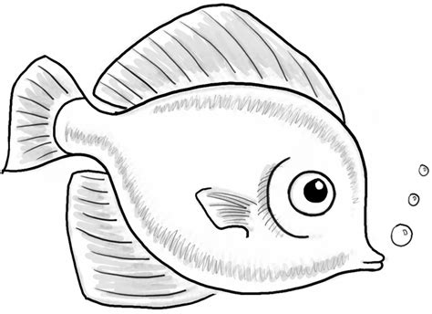 draw  cute fish cartoon  simple steps  kids