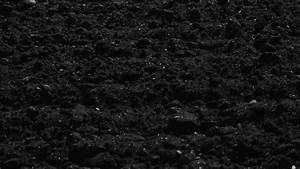 Black Loam - Ridgeview