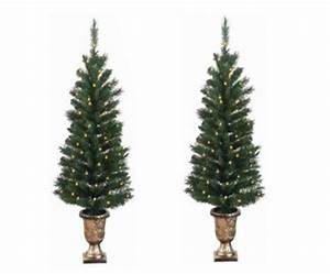 Pack, Of, 2, Pre-lit, Potted, Porch, Pine, Artifical, Christmas, Topiary, Tree, -, Clear, Lights