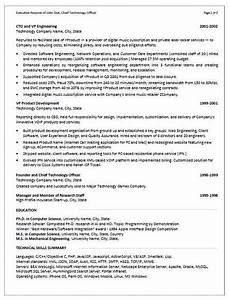 examples rescueresumes professional resume writing With resume writers in summerville sc