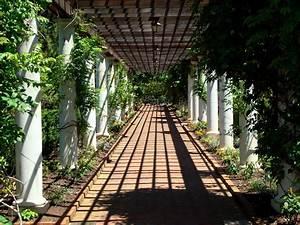 Charlotte botanical gardens for Botanical gardens charlotte