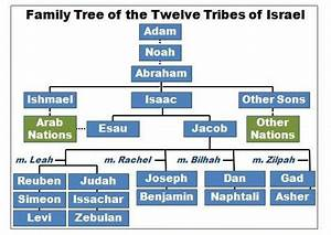 Books Of The Bible Chart Free Tribes Science Genesis Code Book Of James 12 Tribes