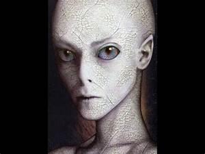 The Grey Alien Hybrids - YouTube