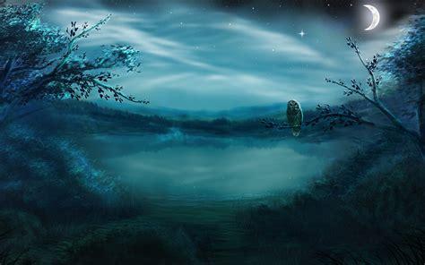 Night Forest Bird Moon Hd #wallpaper