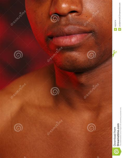 african american lips  stock images image