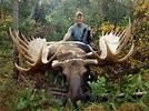 British Columbia Moose Hunt » Outdoors International
