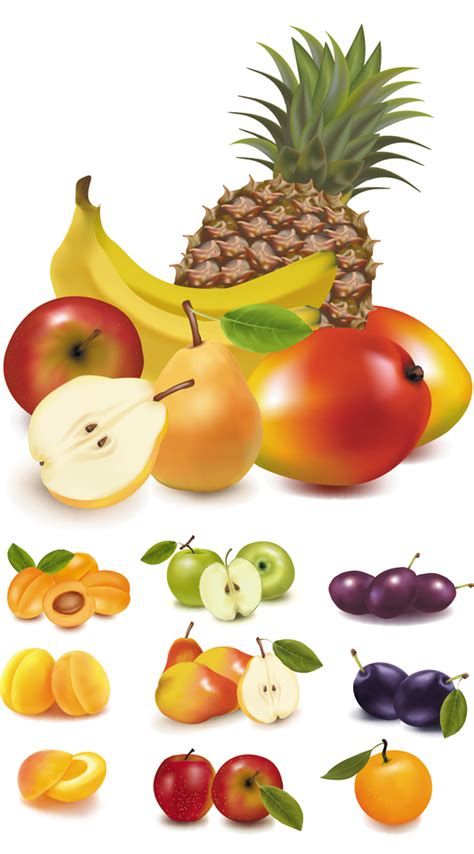 Free Vector Fresh Fruits Download By Freeiconsdownload On