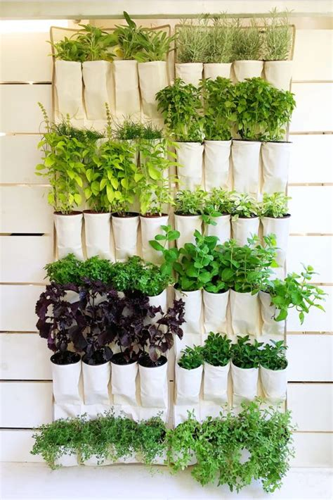 Patio Color Ideas by 18 Easy Hanging Gardens Ideas For Outdoors Shelterness