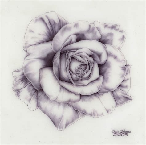 Amazing Flower Drawing Amazing Pencil Drawings Of Flowers