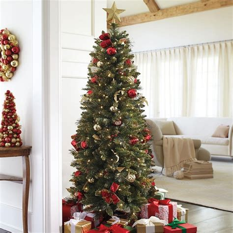 top  pencil slim christmas trees  absolute christmas