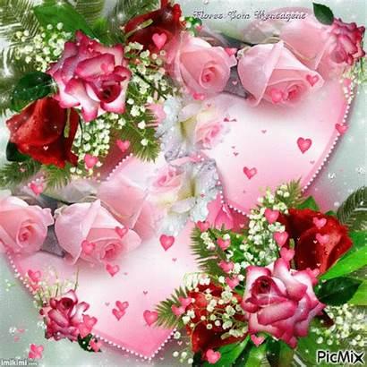 Gifs Flores Flowers Roses Animated Rosen Herzen