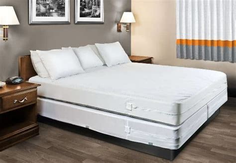 bed bug mattress encasement reviews  buyers