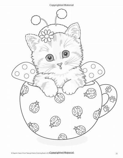 Coloring Pages Teacup Kittens Kitten Cat Cats