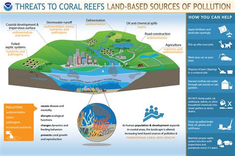 How Does Pollution Threaten Coral Reefs