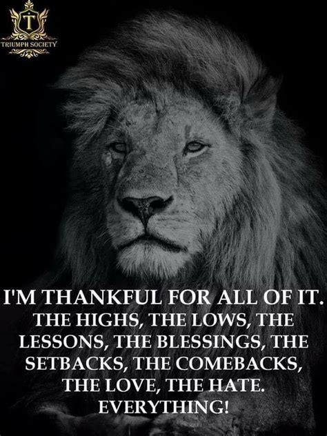 pin  gray howard  inspirational pinterest lion