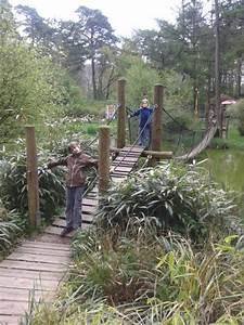 Rostock Zoo Preise : eisb ren gorillas und mammuts der rostocker zoo mit darwineum family4travel ~ A.2002-acura-tl-radio.info Haus und Dekorationen