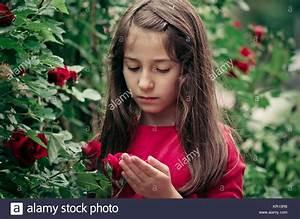 Hübsche 12 Jährige Mädchen : portr t der h bsche junge m dchen 8 12 jahre holding und riechen bulgarische rote rosen vor der ~ Eleganceandgraceweddings.com Haus und Dekorationen