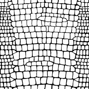 Crocodile skin texture | Ornament 12 : black and white ...