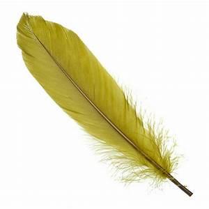 Oreiller En Plume D Oie : oreiller en plume oreiller plume canard ou oie oreiller ~ Melissatoandfro.com Idées de Décoration