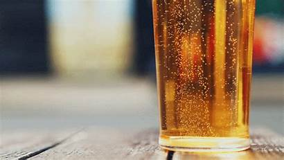 Beer Cinemagraph Glass Bubbles Gifs Animated Garden