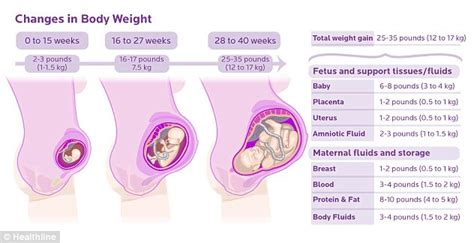 hot breasts during early pregnancy from head to toe the dozens of different ways pregnancy