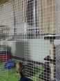 貓籠-高180 寬270 深60 {貓跳台 狗籠 天竺鼠籠 兔籠 鳥籠 鐵網片 井網片}@毛孩屋の設計|PChome 個人新聞台