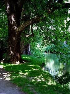 Baum Am Wasser : unser gebirge ii ein neuer versuch thur ~ A.2002-acura-tl-radio.info Haus und Dekorationen